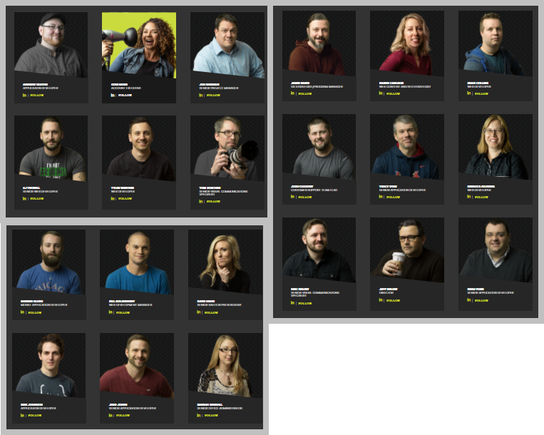 A composite image of the LRS Web Solutions staff